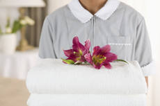 Domestic Cleaning Franchise